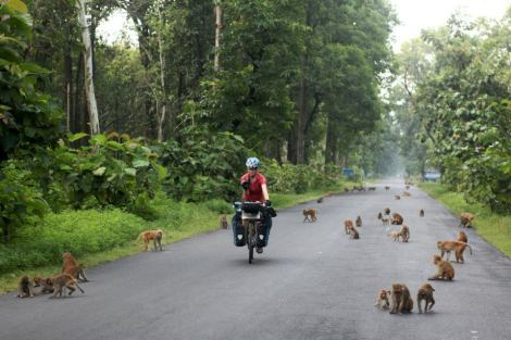 Mel Yule cycling in Nepal with monkeys